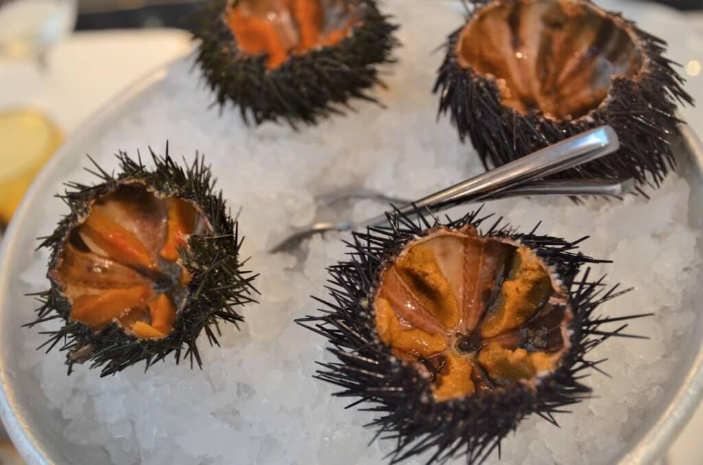 STK 3513 min R 1 1024x678 - 絶品の魚介料理がお勧めのレストラン「I Sapori del Mare」